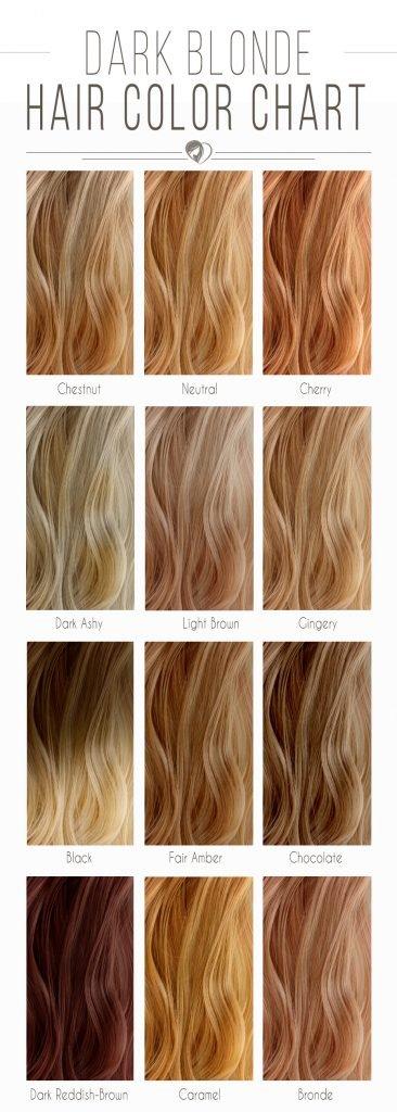 blonde-hair-color-chart-dark-366x1024 (1)
