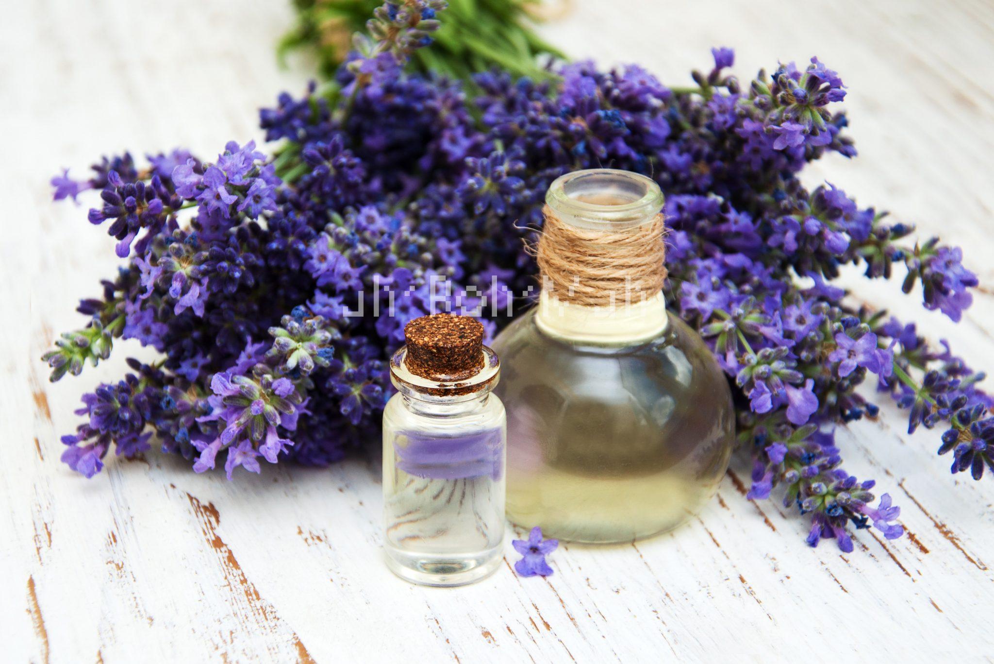 hair growth Lavender Oil