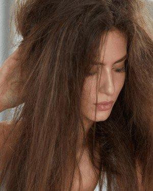 dry hair type