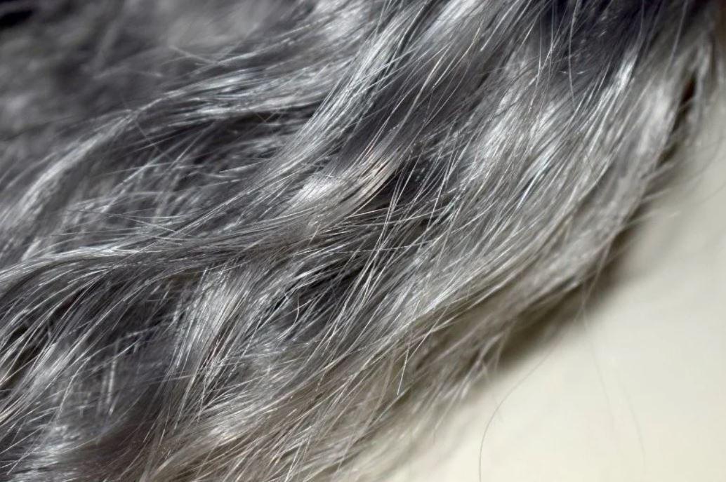 grey hair reversible